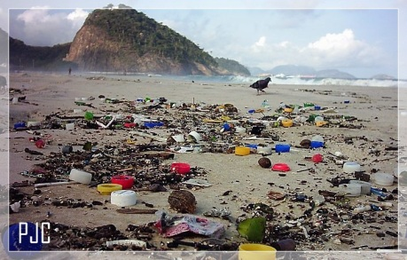 praia-poluida