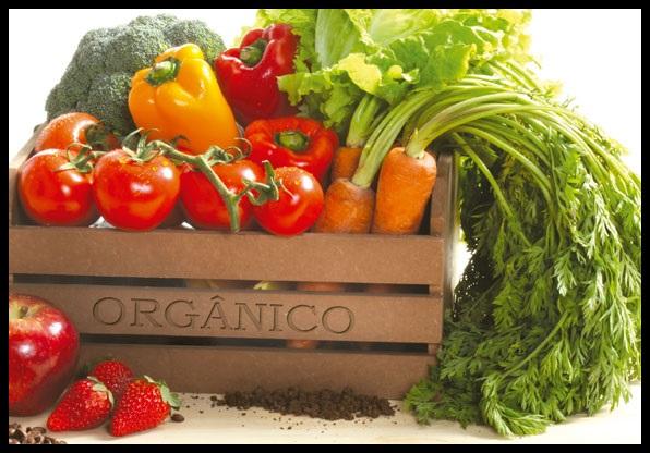 alimentos_orgnicos_2