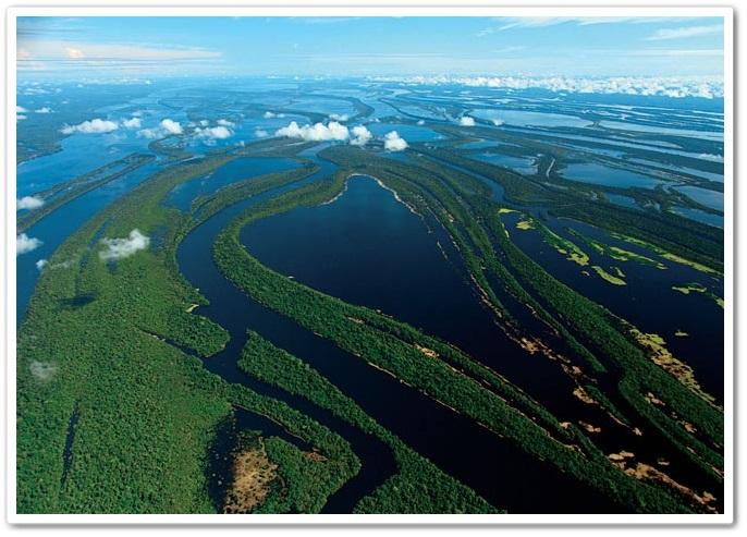 anavilhanas-rio-negro
