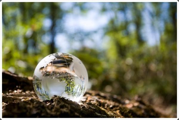 principios_gerais_de_direito_ambiental_gratuito