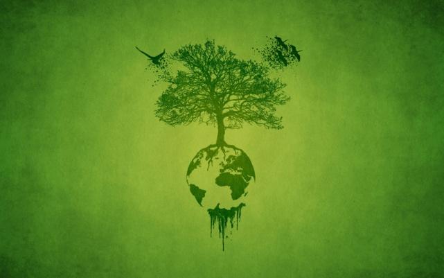 Resultado de imagem para retrospectivas das ações ambientais 2018