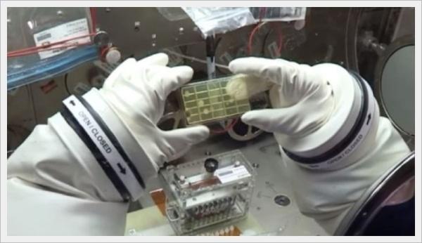 400d-Astronautas-de-la-NASA.-Small